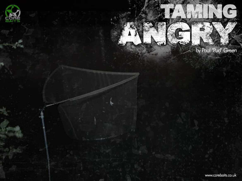 Taming Angry